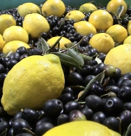 The ingredients of our Lemon Infused Oil